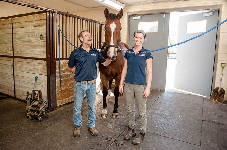 Horse patient poses with farriers in Farrier shop