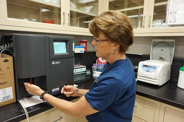 Clinical Diagnostic Lab team member working in the lab