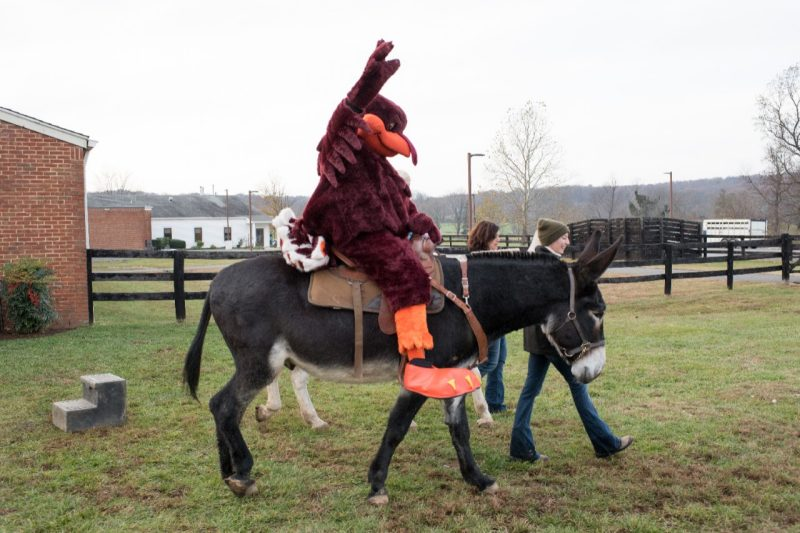 Video and Photos: Youngkin Equine Soundness Clinic Dedication Event